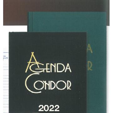 Agenda Escritório Condor 2022 140X210mm Diária Azul A21