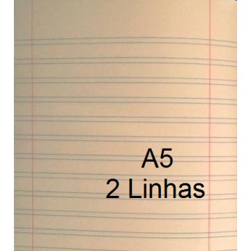 Caderno A5 Duas linhas 20 Folhas
